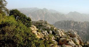 Dana Nationalpark